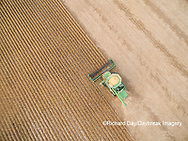 63801-09409 Soybean Harvest, John Deere combine harvesting soybeans - aerial - Marion Co. IL