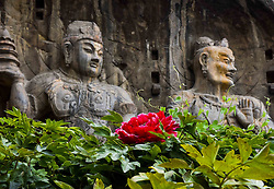 LUOYANG, Sept. 3, 2016 (Xinhua) -- Photo taken on Sept. 3, 2016 shows statues of Longmen Grottoes in Luoyang,  central China's Henan Province.  Longmen Grottoes has more than 2,300 grottoes with 110,000 Buddhist figures and images, over 80 dagobas and 2,800 inscribed tablets, created between the Northern Wei Dynasty (386-557) and Song Dynasty (960-1279).  (Xinhua/Zhao Ge) (wx) (Credit Image: © Zhao Ge/Xinhua via ZUMA Wire)