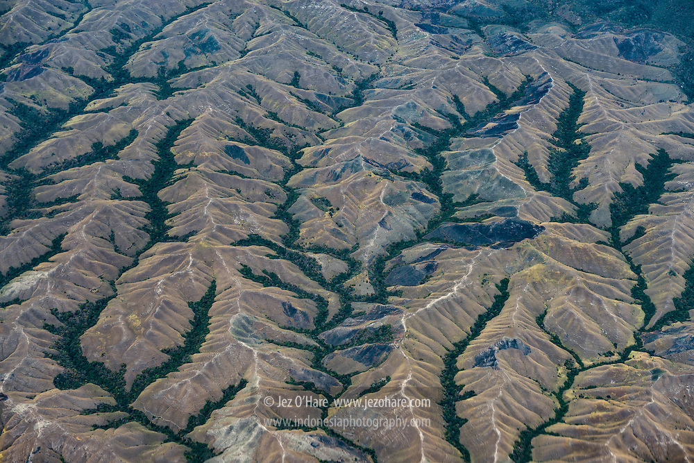 River valley forests, Sumba, Indonesia