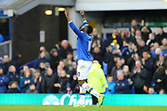 Romelu Lukaku of Everton celebrates after scoring his teams 3rd goal. Premier league match, Everton v Hull city at Goodison Park in Liverpool, Merseyside on Saturday 18th March 2017.<br /> pic by Chris Stading, Andrew Orchard sports photography.