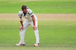 Harry Podmore of Middlesex reacts to a chance.  - Mandatory by-line: Alex Davidson/JMP - 12/07/2016 - CRICKET - Cooper Associates County Ground - Taunton, United Kingdom - Somerset v Middlesex - Day 3 - Specsavers County Championship Division One