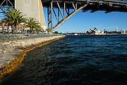 North-western Pylon of Sydney Harbour Bridge, with Sydney Opera House in background. Milsons Point, Sydney, Australia