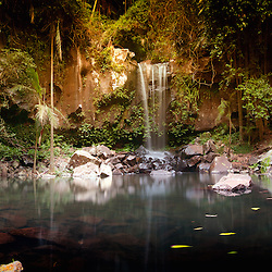 Curtis falls at Mt Tamborine, Gold Coast, Queensland Australia is a short walk from the car park. On this track you will walk through rainforest and descend steep stairs to a large pool at the base of Curtis Falls.