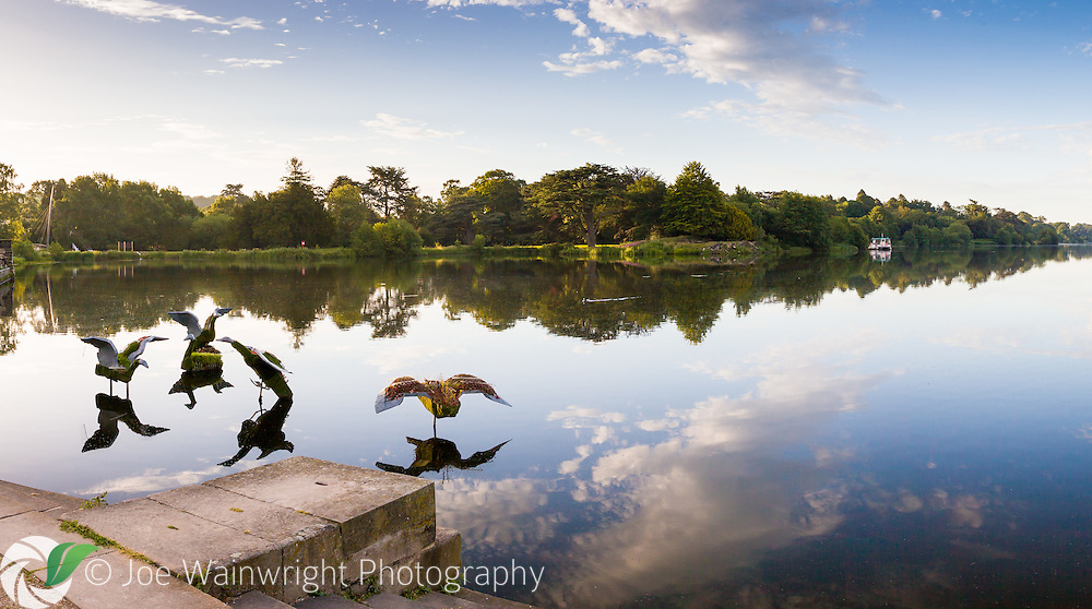 The lake and Capability Brown landscae, photographed in July just after dawn, at Trentham Gardens, Staffordshire This image is available for sale for editorial purposes, please contact me for more information.