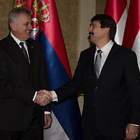 Tomislav Nikolic (L) president of Serbia shakes hands with his Hungarian counterpart Janos Ader (R) during their meeting in Budapest, Hungary on November 13, 2012. ATTILA VOLGYI