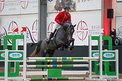 120, Cohiba By Picobello Z, Awouters Yves, BEL<br /> Hengstenkeuring BWP<br /> 3de phase - Hulsterlo - Meerdonk 2018<br /> © Hippo Foto - Dirk Caremans<br /> 15/03/2018