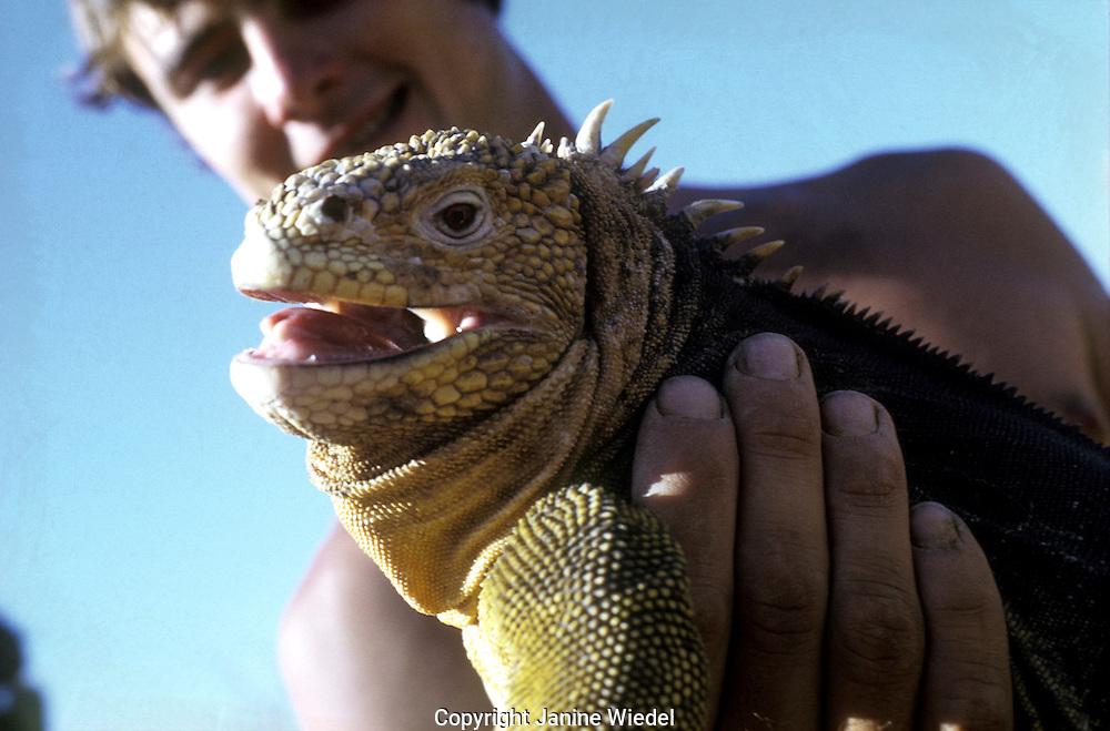 man holding Iguana on galapagos Island.