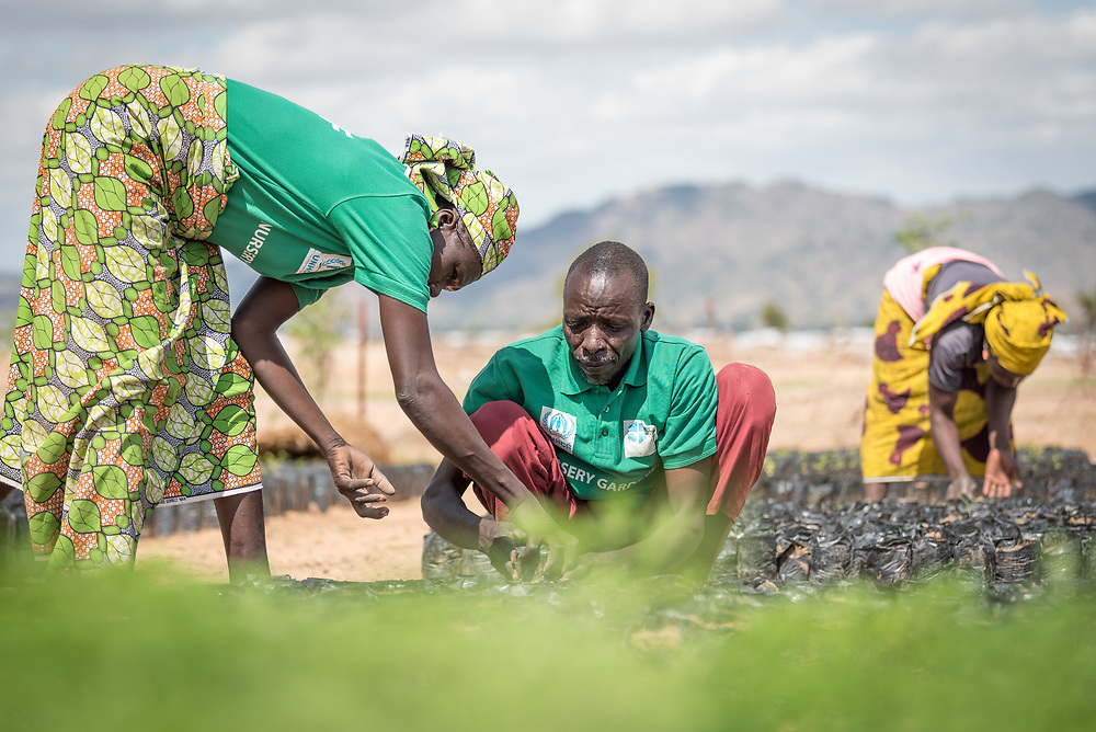 31 May 2019, Mokolo, Cameroon: A group of nursery gardeners, themselves Nigerian refugees, work in a tree nursery in the Minawao camp for Nigerian refugees. Part of a Lutheran World Federation World Service project, the target is to develop more than 100,000 plants in the year of 2019. Planted across 20 so-called 'green spaces', a five-year planting and harvest cycle ensures material to be used as firewood, vines for building of roofs, and a step in alleviating environmental impact in and around Minawao. The Minawao camp for Nigerian refugees, located in the Far North region of Cameroon, hosts some 58,000 refugees from North East Nigeria. The refugees are supported by the Lutheran World Federation, together with a range of partners.