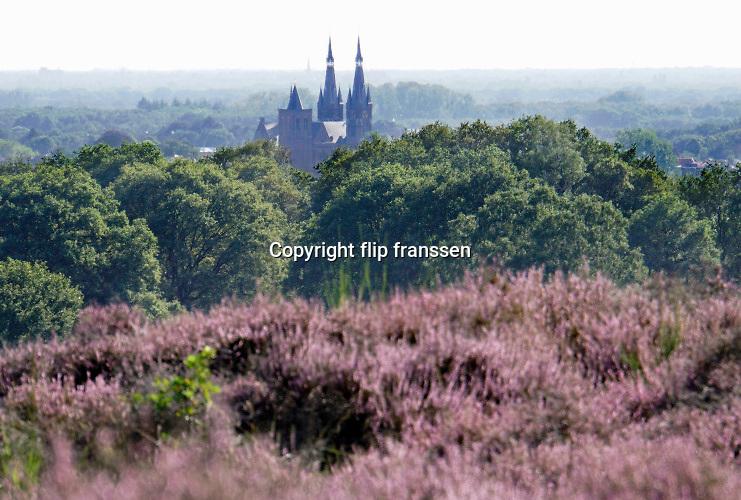 Nederland, Mook, 23-8-2019Natuurgebied De Mookerheide. Nu het even geregend heeft staat de hei mooi in bloei. Toch zijn er door de droogte van dit en viorig jaar veel heistruiken dood gegaan, verdord.Ook bekend om de historische Slag op de Mookerheide op 14 april 1574. De Mookerhei is een natuurgebied ten oosten van Mook in de provincie Limburg. Zij ligt op een uitloper van de Nijmeegse stuwwal. In het zuidelijke deel groeit struikheide die in augustus prachtig bloeit. Dit gebied is onderdeel van de wandelroute, pelgrimsroute, walk of wisdom door het rijk van Nijmegen. Op de achtergrond de markante kerk met twee spitsen van Cuijk, cuykFoto: Flip Franssen