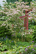 RHS Garden Bridgewater, supported by BTA - Press preview day at The RHS Chelsea Flower Show.