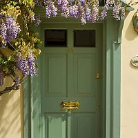 Green front door and wisteria, Sandwich, Kent, England