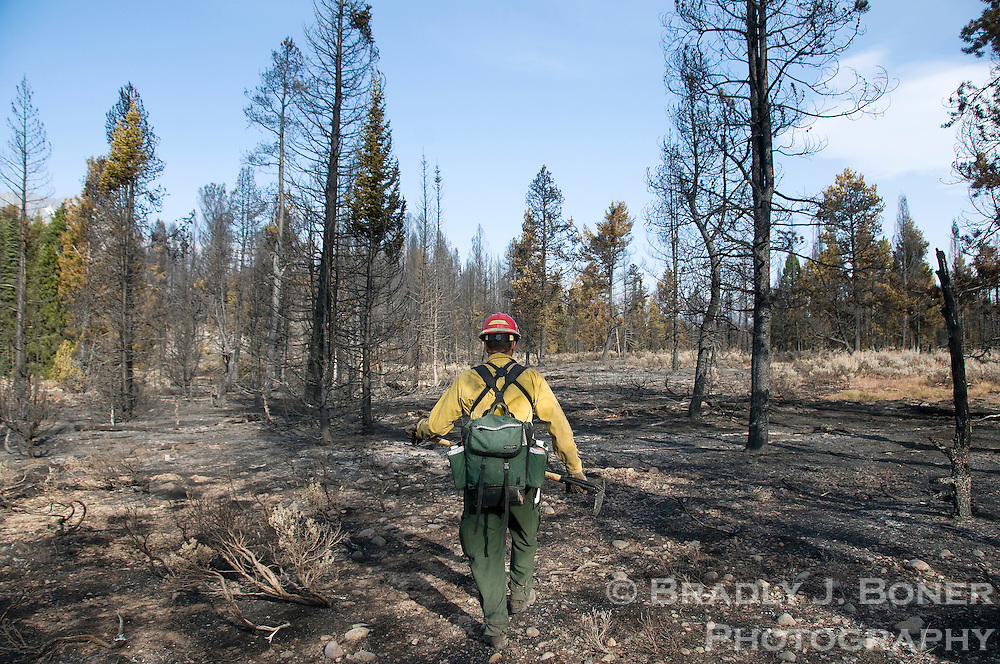 NEWS&GUIDE PHOTO / BRADLY J. BONER.Teton Interagency Fire incident commander trainee Steve Markason walks along the south perimeter of the Bearpaw burn area Tuesday morning in Grand Teton National Park. Fire officials feel they have sucessfully contained the fire to the southwest corner of Jackson Lake.