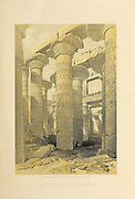 Hall of columns at Karnak from The Holy Land : Syria, Idumea, Arabia, Egypt & Nubia by Roberts, David, (1796-1864) Engraved by Louis Haghe. Volumes 5 and 6. Book Published in 1855 by D. Appleton & Co., 346 & 348 Broadway in New York.