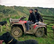 New Zealand New Zealand