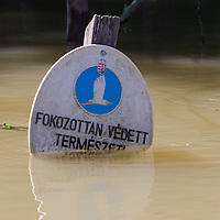 Sign of the nature reserve is submerged in the floodwater in the forest in Gemenc (about 218 km South of the capital city Budapest), Hungary on June 14, 2013. ATTILA VOLGYI