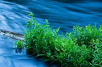 Metolius River in central Oregon.
