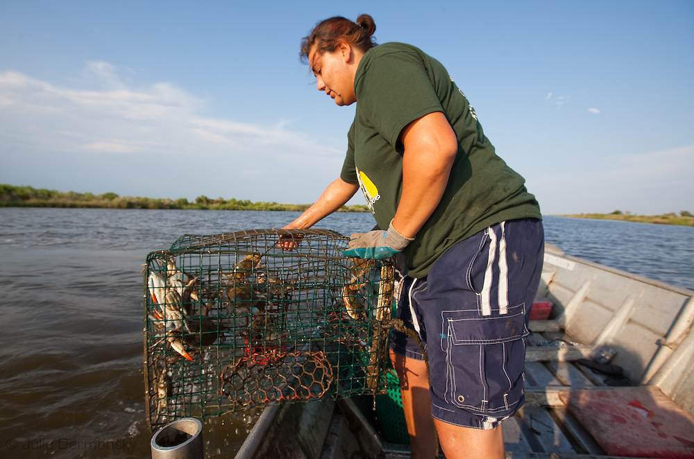 Grace Welch, part of the Pointe-au Chien Indian tribe collects crabs from her traps on the water so Bayou Pointe-au-Chien since crab and shrimp season were officially closed on May 29th, 2010 due to the BP oil spill that is making its' way into the lakes and bayous close to Pointe-au-Chien.g