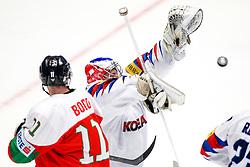 Matt Dalton of Korea during ice hockey match between Hungary and Korea at IIHF World Championship DIV. I Group A Kazakhstan 2019, on April 29, 2019 in Barys Arena, Nur-Sultan, Kazakhstan. Photo by Matic Klansek Velej / Sportida