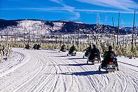 Snowmobiling, Yellowstone National Park, Wyoming USA