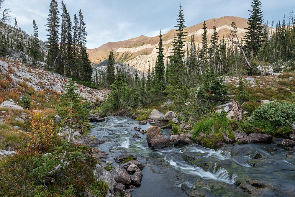Stream, Wallowa Mountains, Oregon.