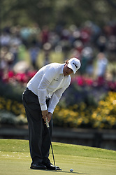 May 11, 2018 - Ponte Vedra Beach, FL, USA - The Players Championship 2018 at TPC Sawgrass..Phil Mickelson on 17 green. (Credit Image: © Bill Frakes via ZUMA Wire)