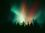 Brilliant red and green aurora during geomagnetic storm on the night of October 27-28, 2001, Upper Susitna Valley, Alaska.