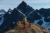 Female hiker on summit of Flakstadtind mountain peak, Flakstadøy, Lofoten Islands, Norway