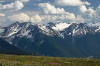 North Cascades Glacier Peak Wilderness