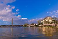 Cherry blossoms (Washington Monument and Jefferson Memorial behind), Cherry Tree Walk, Tidal Basin, Washington D.C., U.S.A.