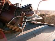 Horse sadlle, Flinders Ranges, South Australia, Australia