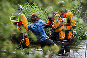 Police officers from Hampshire Police Marine Support Unit remove a female environmental activist from HS2 Rebellion from the river Colne from which she had been trying to protect an ancient alder tree from destruction during works for the HS2 high-speed rail link on 24th July 2020 in Denham, United Kingdom. A large security operation involving officers from the Metropolitan Police, Thames Valley Police, City of London Police and Hampshire Police as well as the National Eviction Team ensured the removal of the tree by HS2 despite the protests by activists.