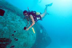 scuba diver and Boeing 727-100 wreck, sunk as an artificial reef in 1993, Miami, Florida, Atlantic Ocean