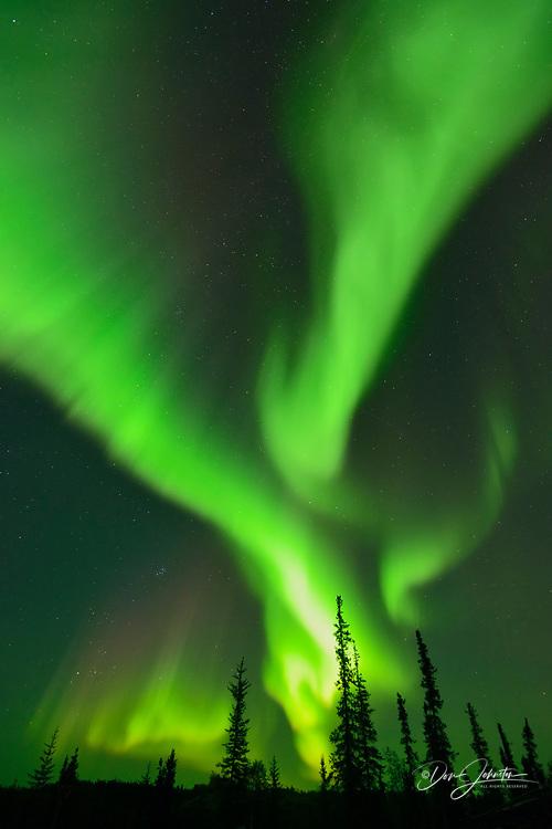 Aurora borealis along the Ingraham Trail, Yellowknife, Northwest Territories, Canada