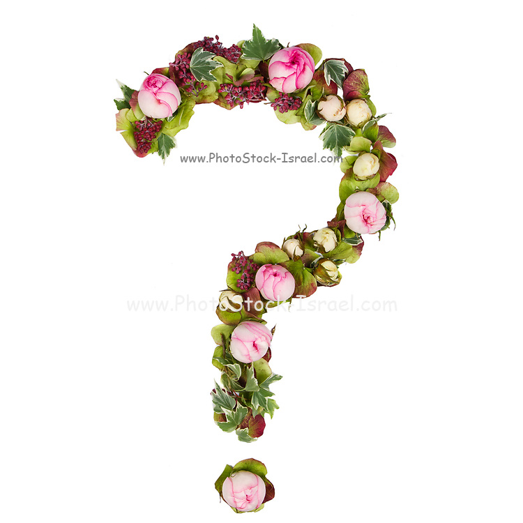 Question Mark Part of a set of letters, Numbers and symbols of the Alphabet made with flowers, branches and leaves on white background