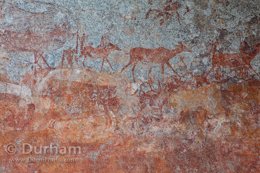 Animals and human figures depicted in San bushman rock paintings, estimated at around 2000 years old, in Nswatugi Cave in Matobo National Park, Zimbabwe.