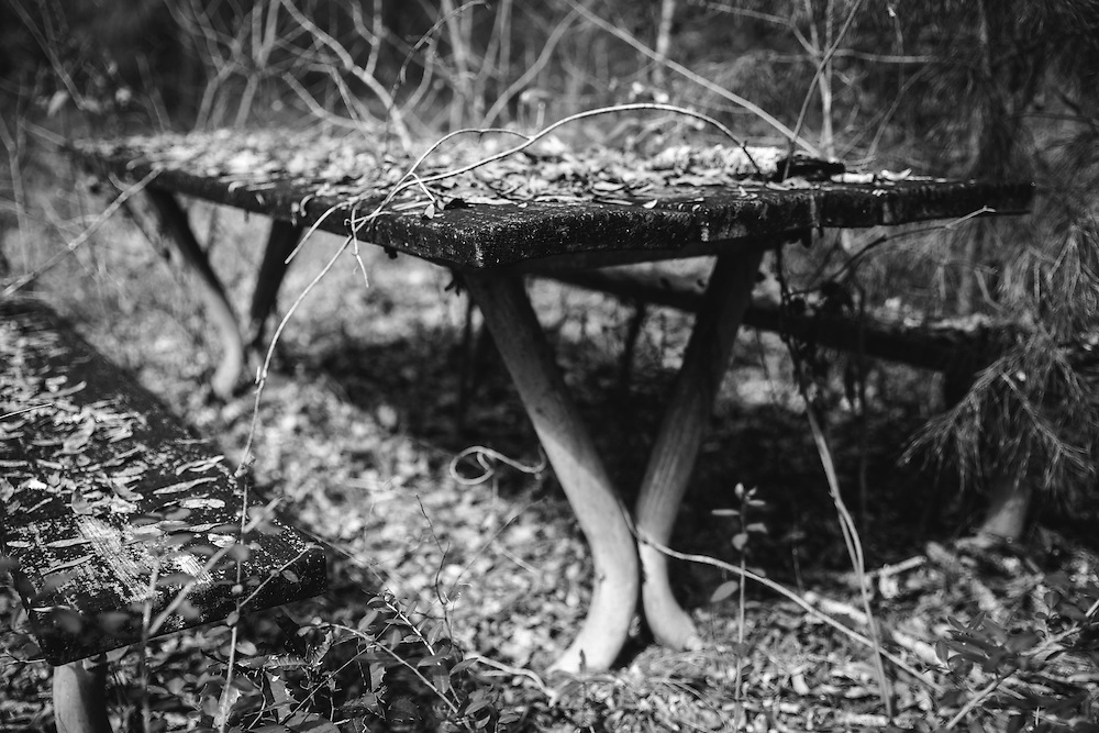 A rotting picnic table sits as a memory of summers long past