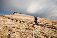 Female hiker hiking on mountain path to Corn Du, Brecon Beacons national park, Wales