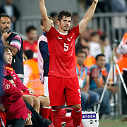 Turkey's Emri Belozoglu celebrates his goal during their FIFA World Cup 2014 qualifying soccer match Turkey betwen Estonia at Sukru Saracoglu stadium in Istanbul September 11, 2012. Photo by TURKPIX