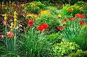 Flower garden at Chateau de Villandry, Villandry, Loire Valley, France