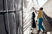 Spanje, El Ejido, 5-11-2019In dit deel van Andalucie worden veel groenten en fruit verbouwd die hun weg vinden via de export naar o.a. Nederland . Het wordt de zee van plastic genoemd omdat de kassen opgebouwd zijn van houten of metalen palen bedekt met zwaar plastic. Mohammed uit Marokko werkt hier al 17 jaar en trekt het plastic strak . Komende zondag zijn er algemene verkiezingen in Spanje en de populistische partij Vox heeft hier een grote aanhang. In de kassen werken voornamelijk migranten uit Afrika, en arbeidsmigranten uit Oost-Europa die een laag loon uitbetaald krijgen, tussen de 30 en 40 euro per 8 urige dag, werkdag, afhankelijk van de werkgever. Er wordt door de kaseigenaren en transportbedrijven goed verdiend maar de boeren vinden dat ze teveel negatieve aandacht krijgen in de media in noord-europa. De migranten klagen dat ze van veel sde schuld krijgen terwijl ze het werk doen wat de spanjaarden niet willen doen.Foto: Flip Franssen