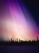 Brilliant violet, purple, blue and orange aurora above spruce forest along Colorado Lake, geomagnetic storm during early morning hours of March 31, 2001, Broad Pass, Alaska.