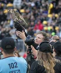 April 29, 2018 - Los Angeles, California, U.S - Will Farrell releases a hawk during opening game festivities prior to the MLS game between the LAFC and the Seattle Sounders on Sunday April 29, 2018, their first game at the Banc of California Stadium in Los Angeles, California. LAFC defeats Sounders, 1-0. (Credit Image: © Prensa Internacional via ZUMA Wire)