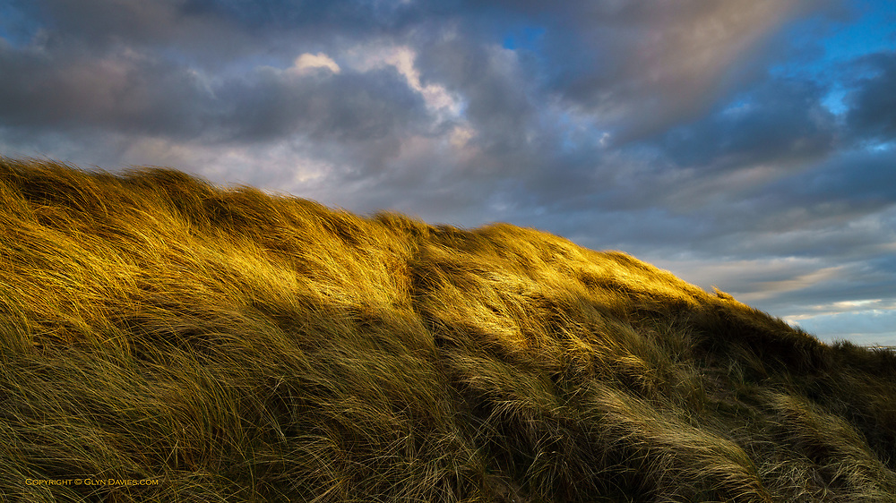 One of my first images that I was truly proud of, was of intensely side-lit, cliff-top grasses blowing around granite boulders at Land's End at the most South Westerly tip of the British Isles. The light on the wind-blown sand dunes at Rhosneigr were such a vivid reminder of the light & textures I experienced nearly 40 years ago. I honestly felt as if I was there on the Cornish clifftop and I didn't want to leave the place.