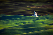 Image of wheatfields with silos near Steptoe, Palouse, eastern Washington, Pacific Northwest by Randy Wells