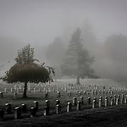 Retsil Veterans Cemetary