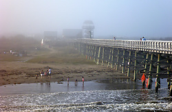 26 December 2015. Grand Isle, Louisiana.<br /> Boxing Day on the beach. Families enjoy unseasonably warm temperatures at the beach.<br /> Photo©; Charlie Varley/varleypix.com