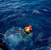 In a red helmet, Squadron Leader Spike Jepson, team leader of the elite 'Red Arrows', Britain's prestigious Royal Air Force aerobatic team, plunges into the blue  Mediterranean waters for his annual Wet Drill exercise during Spring training in Cyprus. We see the pilot, small in the picture surrounded by frothing, blue water that engulfs his small body making him look vulnerable. There are lines attaching him to a boat ensuring his safety. The rehearsal is to practise a helicopter recovery after a fast-jet ejection over the sea. His RAF-issue life vest (containing a vital life-raft) has inflated when in  contact with the salt water and helps him stay afloat in the cold water. This yearly event is required of all flying personnel to ensure that any accident over water can reach a positive outcome - by the rescuing of an expensively-trained pilot or navigator. .