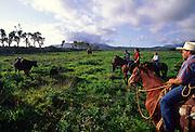 Horseback Riding, Princeville, Hanalei,  Kauai, Hawaii, USA<br />