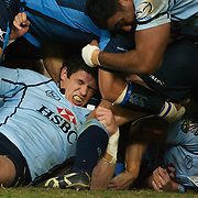 Tom Carter protects himself in the maul during the Super 14 match between the Waratahs and the Bulls at the Sydney Football Stadium, Sydney, Australia on April 11, 2009.  Photo Tim Clayton