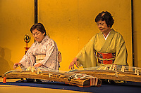 Koto is the national instrument of Japan and are made from kiri wood (Paulownia tomentosa). The strings are strung over 13 movable bridges along the width of the instrument. Players can adjust the pitch by moving bridges before playing, using three finger picks (thumb, index finger and middle finger) to pluck the strings.